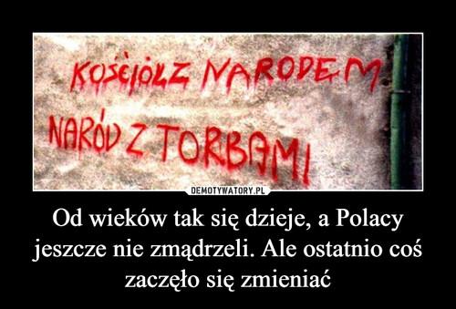 Od wieków tak się dzieje, a Polacy jeszcze nie zmądrzeli. Ale ostatnio coś zaczęło się zmieniać