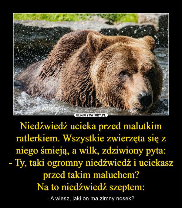 [Obrazek: 1631564470_pkno0y_600.jpg]
