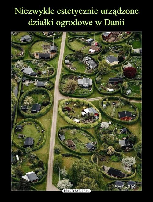 Niezwykle estetycznie urządzone działki ogrodowe w Danii