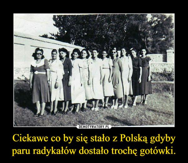 Ciekawe co by się stało z Polską gdyby paru radykałów dostało trochę gotówki. –