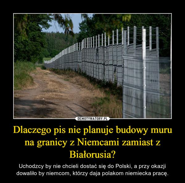 Dlaczego pis nie planuje budowy muru na granicy z Niemcami zamiast z Białorusia? – Uchodzcy by nie chcieli dostać się do Polski, a przy okazji dowaliło by niemcom, którzy daja polakom niemiecka pracę.